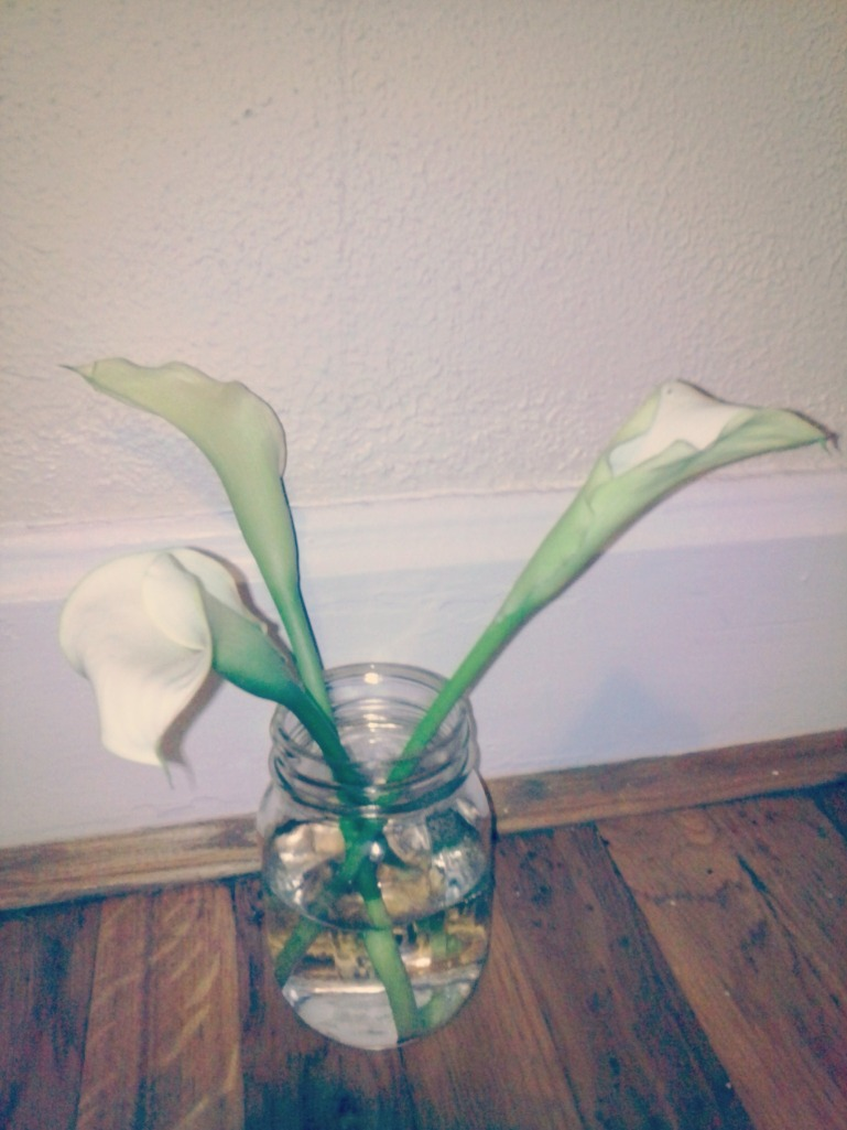 calla lillies 1